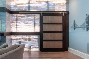 TruStile Barn Door with Edelman Shagreen Leather Panels